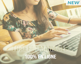 Online-traffic-manager-formation
